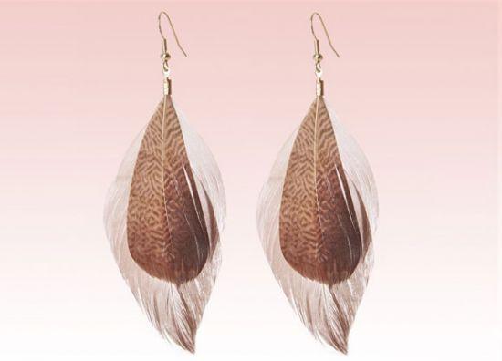 Accesorios de plumas