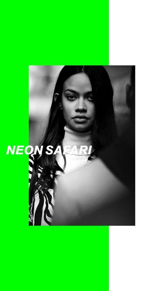 neon safari catalogo mujer